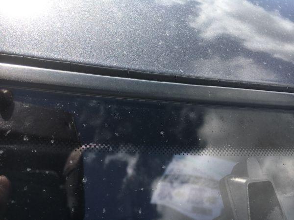 1990 Nissan Skyline R32 GTR roof bead
